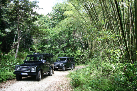Location 4X4 Defender 110 Land-Rover en Guadeloupe en Privatisé avec Guide Chauffeur